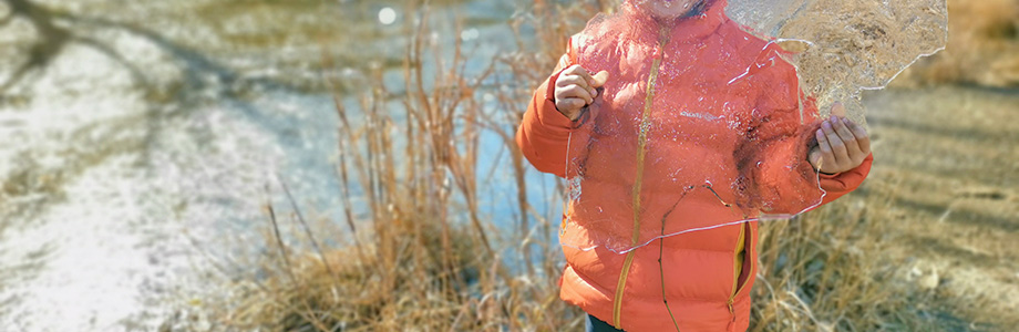 池に張った氷