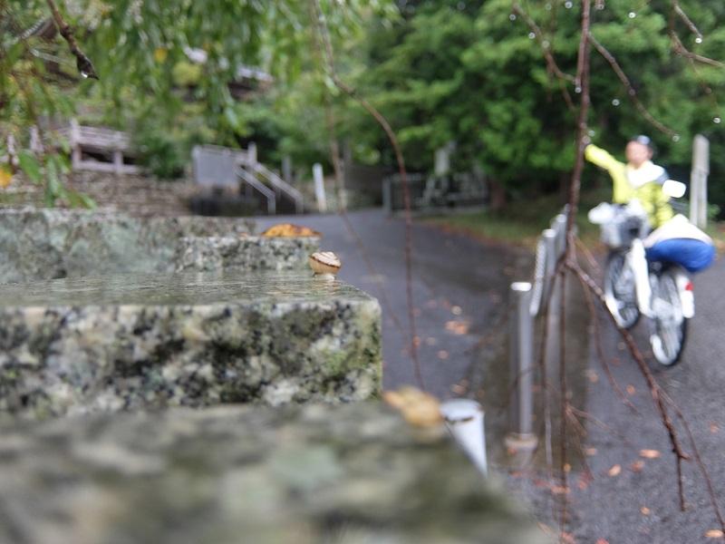 8番札所 熊谷寺(くまだにじ)