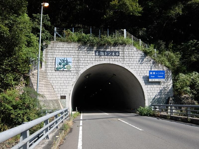 養瀬トンネル