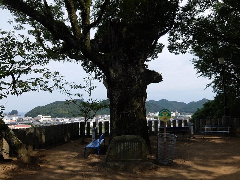 23番札所 薬王寺(やくおうじ)