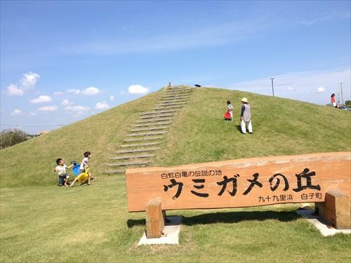 ウミガメの丘